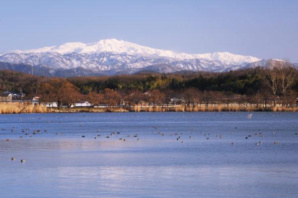 木場潟公園からみる白山 ©石川県観光連盟
